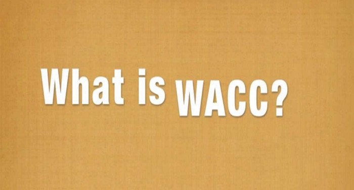Practical-issues-in-determining-the-cost-of-capital-and-the-calculation-of-WACC-for-IFRS-purposes